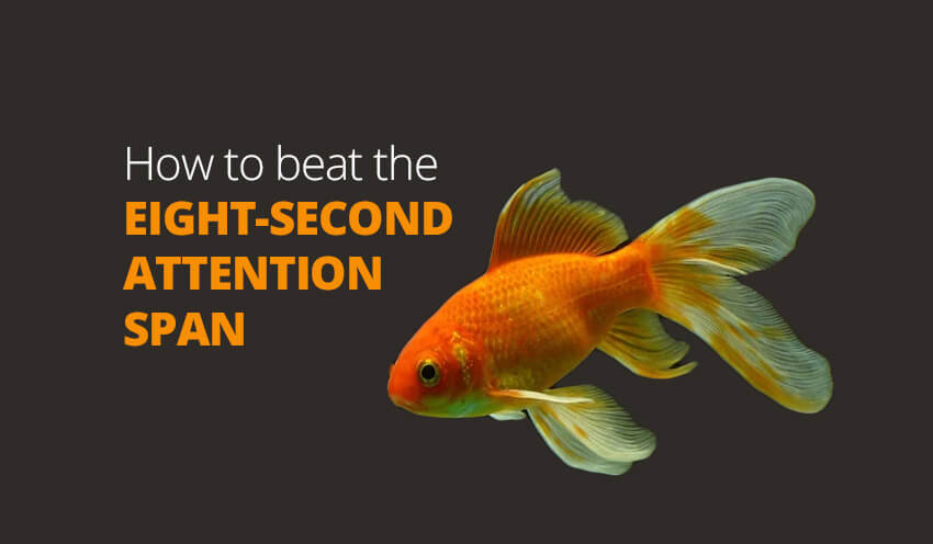 eight-second attention span